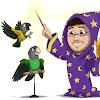 Parrot Wizard