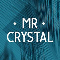 Mr Crystal Net Worth