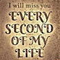 miss you past
