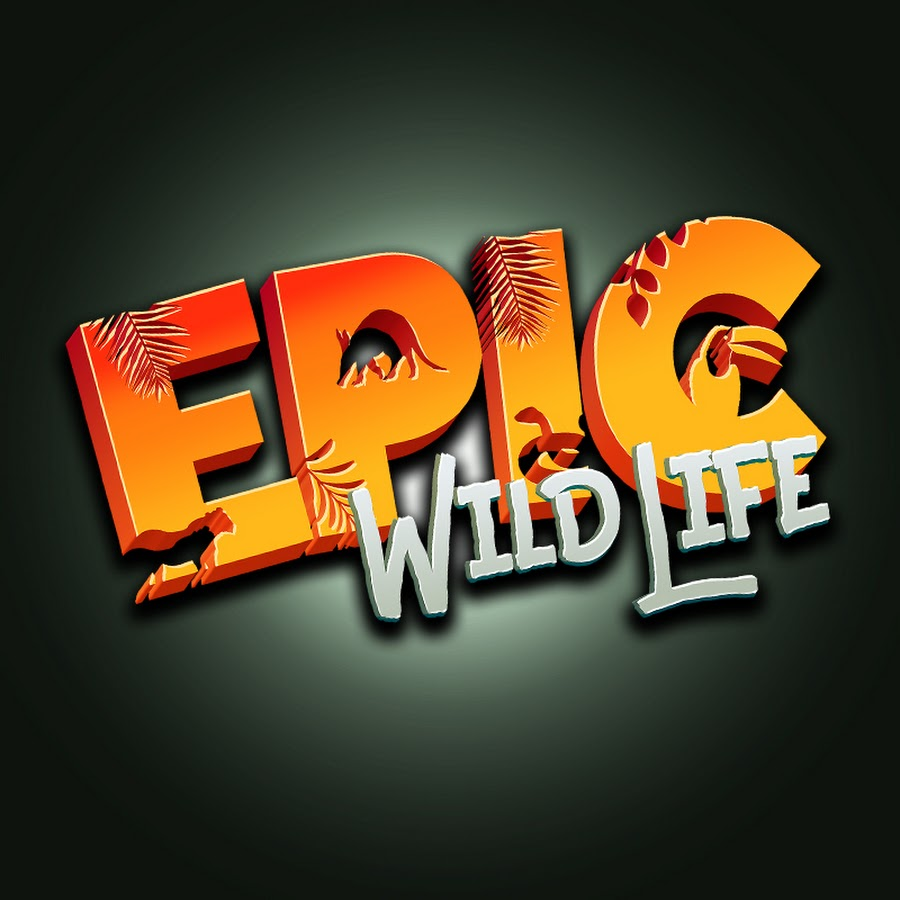 Epic Wildlife