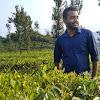 Ashin K Ajay