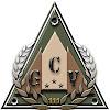 Grupo de Combate Virtual del Escuadrón 111