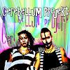 Cerebellum Projekt