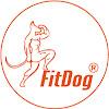FitDog Finland Oy