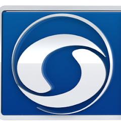 Doordarshan Girnar Net Worth