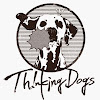 Thinking Dogs Official YouTube Channel