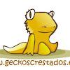 Geckos Crestados