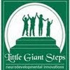 Little Giant Steps