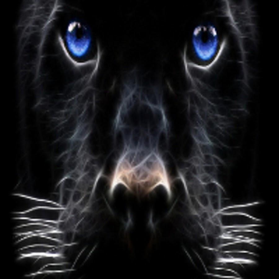картинка глаза пантеры с голубыми глазами всех
