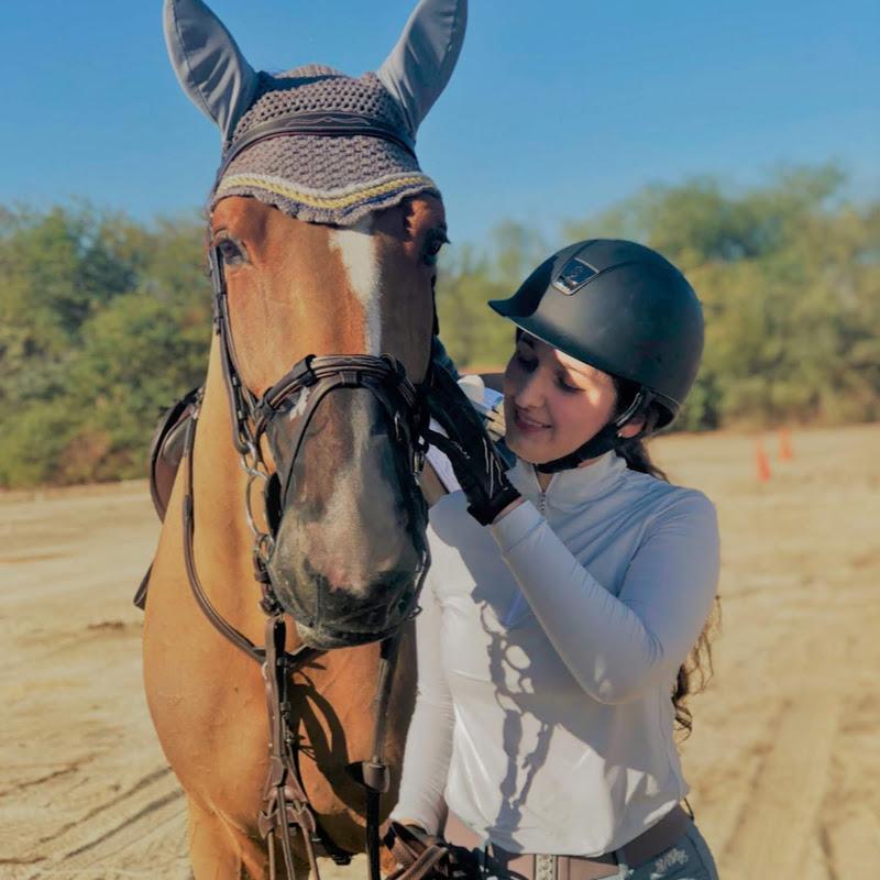 Horses by Hulachowdown