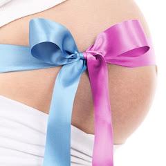 Artikel Lengkap Ibu Hamil Net Worth