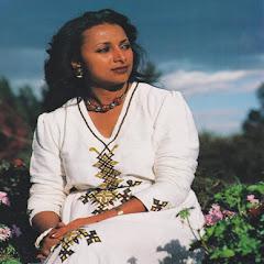 AddisFun Net Worth