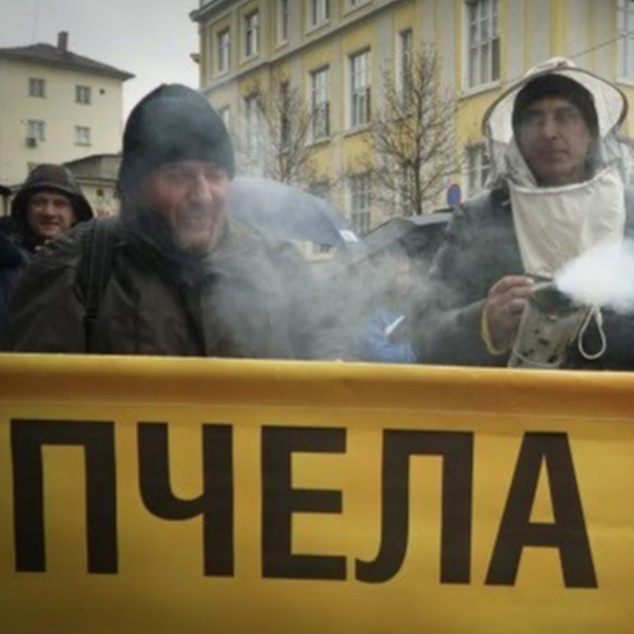 Пчела 2018- Благоевград bee2018Blagoevgrad