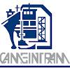 CAMEINTRAM Organismo Empresarial