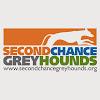 Second Chance Greyhounds