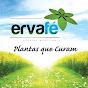 Erva Fé - Plantas