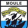 Moul' TV