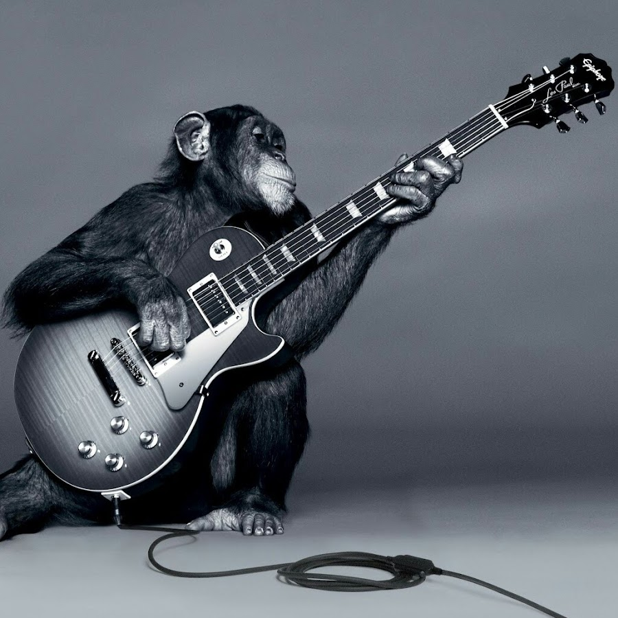 Смешные картинки с гитарами, поправляйтесь картинки открытка