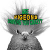 Goldshot Exterminating: Pest, Pigeon Control, Bat Removal, Termites, Metro Phoenix AZ