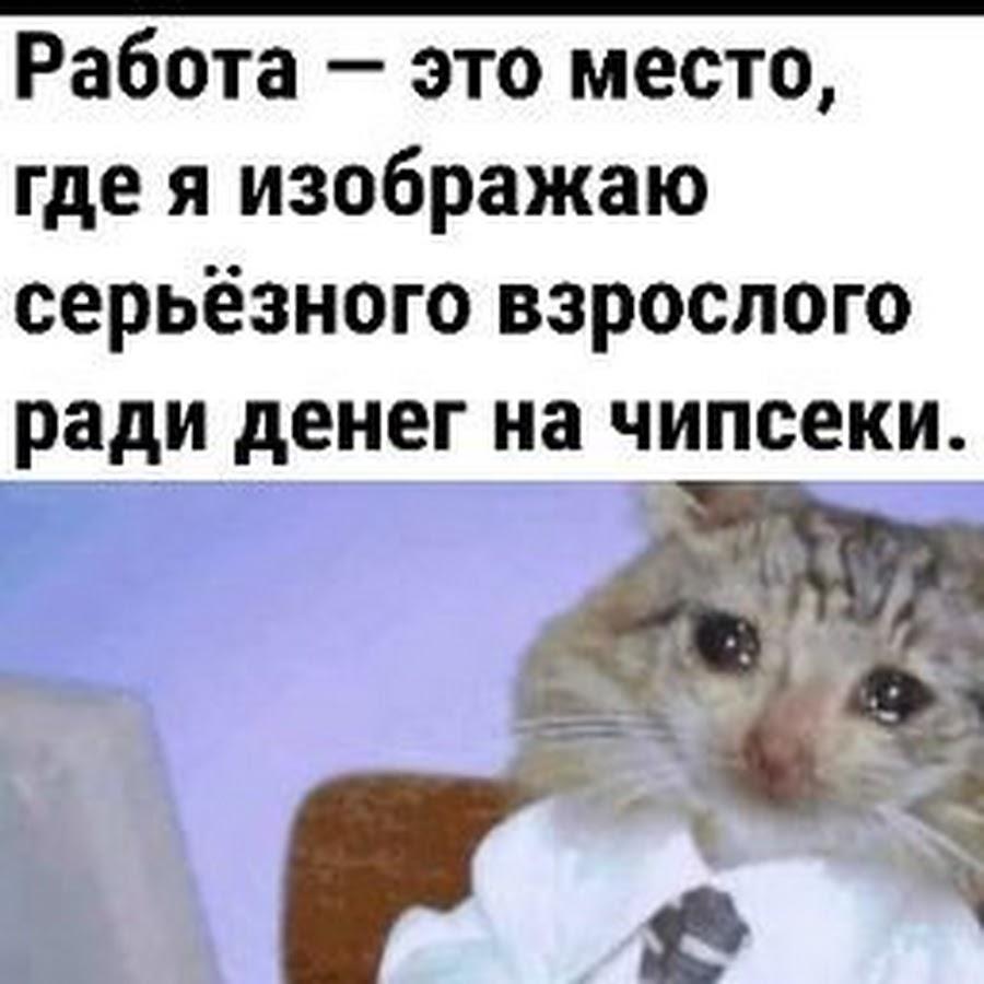 Львы, картинки на тему республика крым