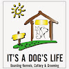 Its A Dog Life Boarding Kennels, Cattery & Grooming