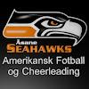 Åsane Seahawks