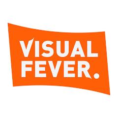 Visual Fever Net Worth