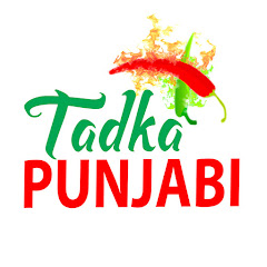 Punjabi Tadka Net Worth