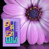 Aablo Export B.V.