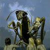 thekindercore