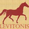 Levitonis - организованные туры в Европу