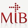 MIB - Master in International Business