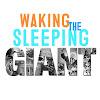Waking the Sleeping Giant