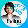 Felinu Academy