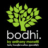 bodhi by anthony monetti