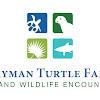 TurtleFarm123