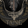 Official TAINE