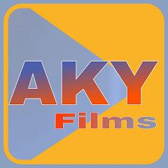 AKY Films Net Worth