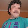 السويفى لتهجين ماعزالبورBoer Goats