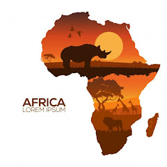 African Excellence Net Worth