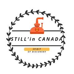 STILL'in CANADA