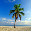 Relaxation Windows 4K Nature - YouTube