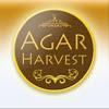 AgarHarvest Agarwood-Oudh