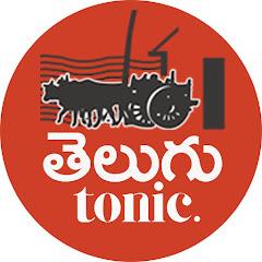 Telugu Tonic Net Worth