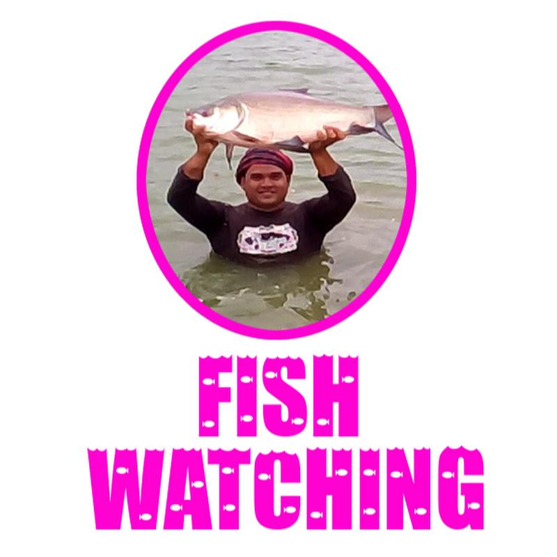 Fish Watching