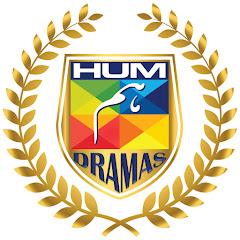 HUM Dramas Net Worth