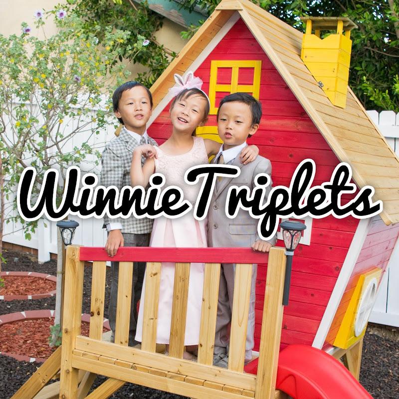 Winnietriplets YouTube channel image