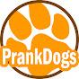 Prankdogs