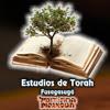 Estudios de Torah - Fusagasugá