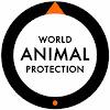 World Animal Protection Thailand